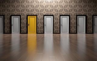 Дориан двери — обзор моделей, преимущества