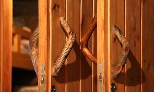 Разновидности финских дверей