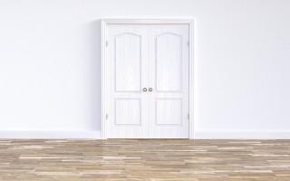 Двери «Эстет» — обзор и преимущества