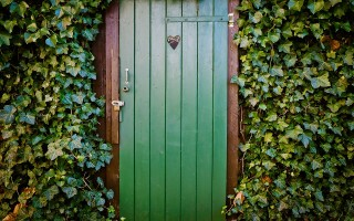 Двери Верда